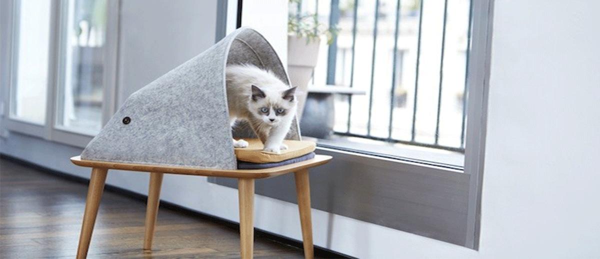 meubles pour animaux
