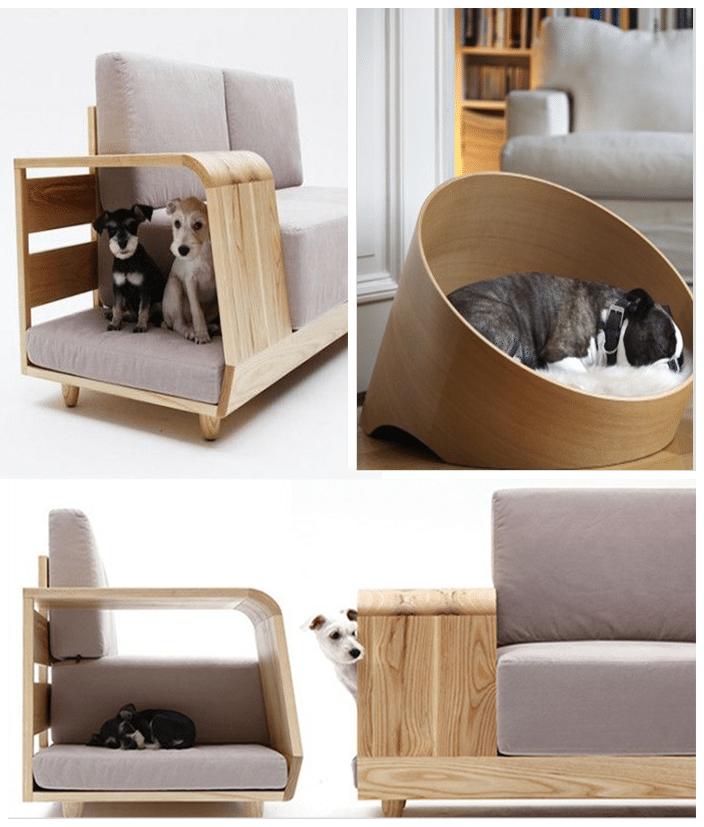 canapé design meubles pour animaux